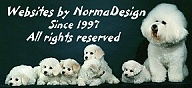 Copyright ©1997-2008  NormaDsign. All Rights Reserved.